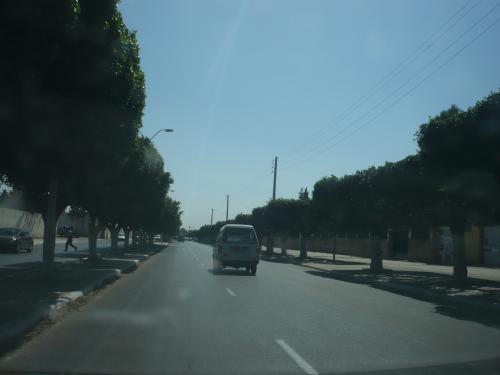 Photo ORAN - P1010314-2059