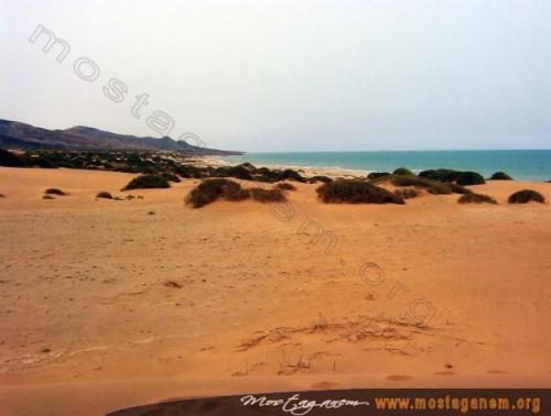 Photo Cha'abia-2307
