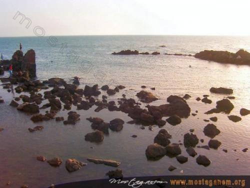 Photo Sidi majdoub-2338