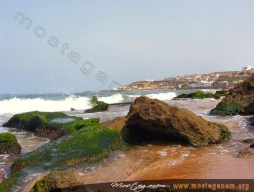 Photo Sidi majdoub-2455