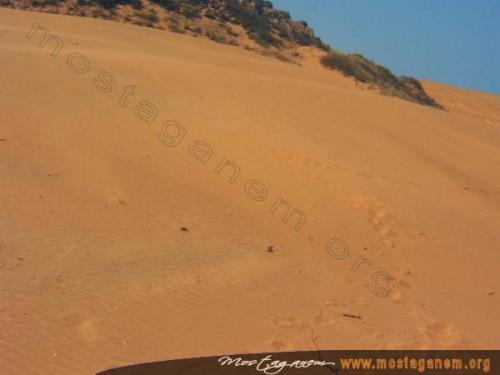 Photo Cha'abia-2461