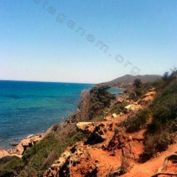 Photo Route de Tenes