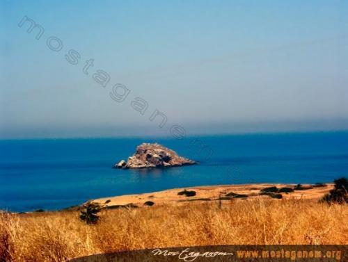 Photo Route de Tenes-2480