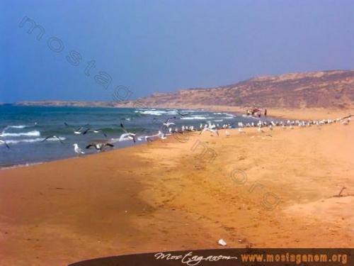 Photo Kahf el esfar - La caverne jaune-2488