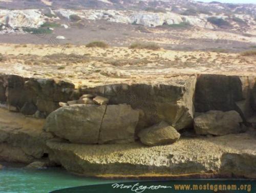 Photo Kahf el esfar - La caverne jaune-2495