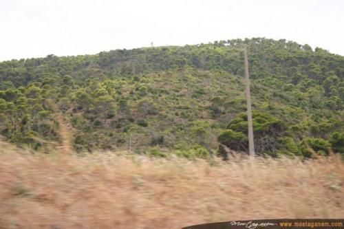 Photo Tenes Ete 2006-2525