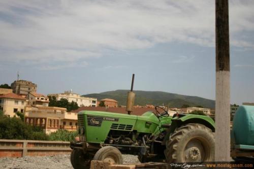 Photo Tenes Ete 2006