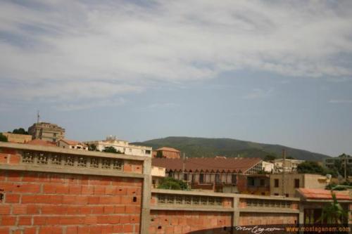 Photo Tenes Ete 2006-2537