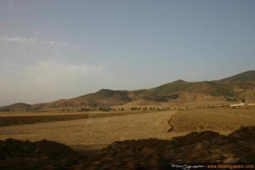 Photo Sur la route d'Alger-2587