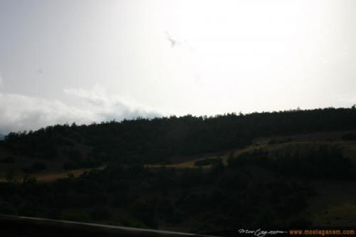 Photo Sur la route d'Alger-2590