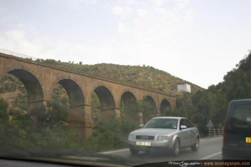 Photo Sur la route d'Alger-2591