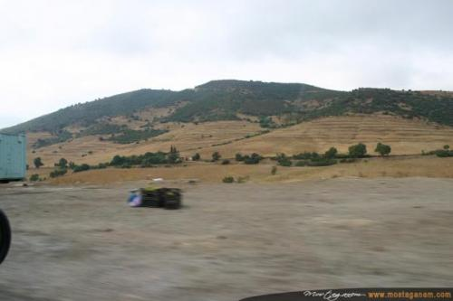 Photo Sur la route d'Alger-2595