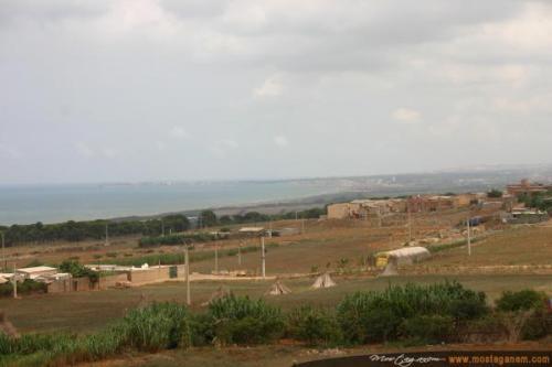Photo Sur la route d'Alger-2600