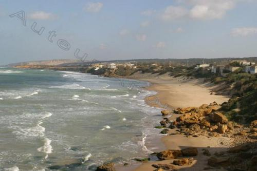 Photo Mostaganem Janvier 2004-2719