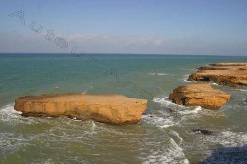 Photo wilis abdelmalek ramdhan-2726