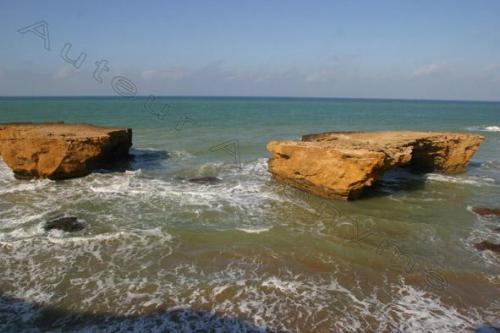 Photo wilis abdelmalek ramdhan-2728