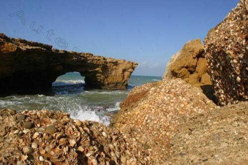 Photo Mostaganem Janvier 2004-2732