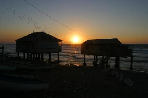 Photo Mostaganem Janvier 2004-2769