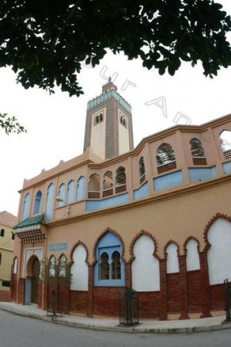 Photo Mostaganem Janvier 2004-2836