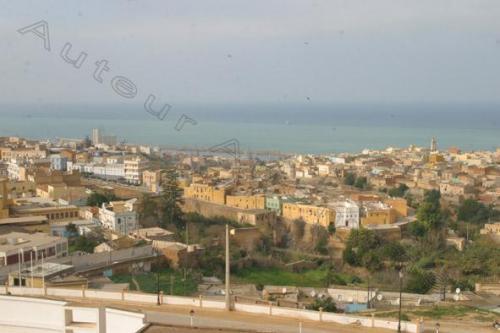 Photo El Arsa-2906