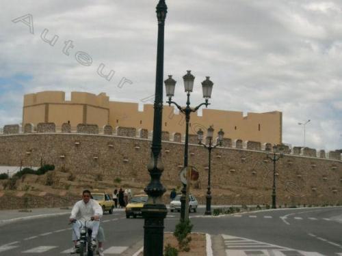 Photo El Arsa-3002